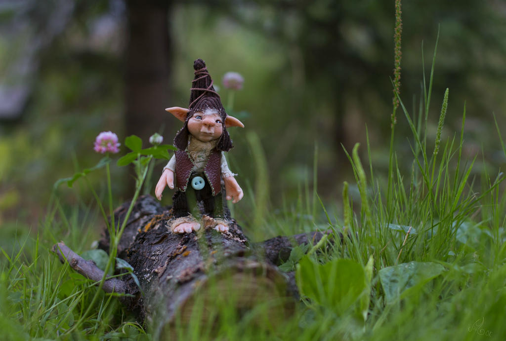 Gnome Theo by Snailmeow