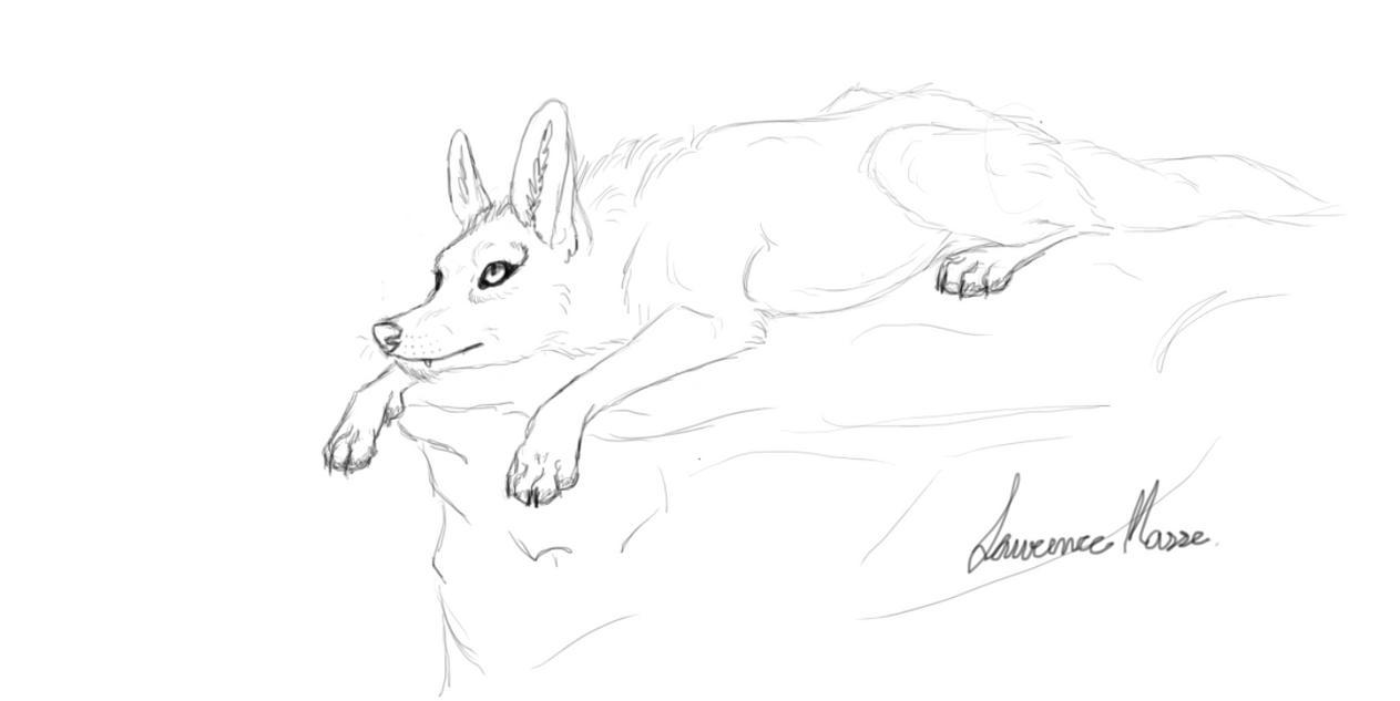 Sketchbook wolf by lovewolf1998