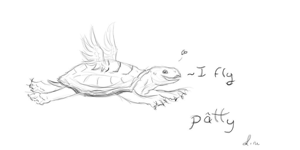 Sketchbook turtle by lovewolf1998