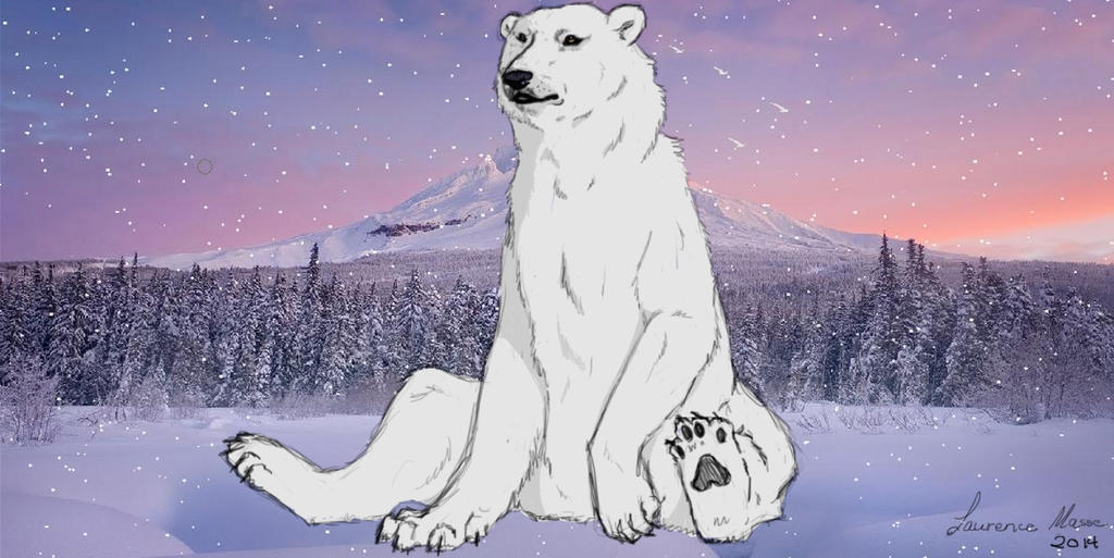polar bear by lovewolf1998