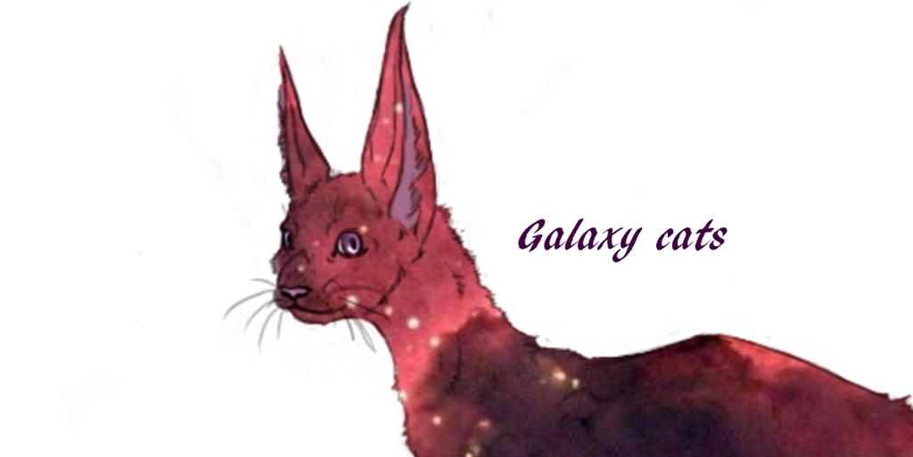 new character is called Galaxy by lovewolf1998