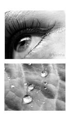 Morning Dreams by tuxinha