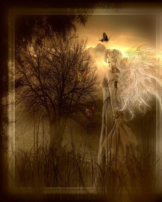 Butterfly Fairy by Misty2007