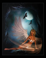 Night Angel by Misty2007