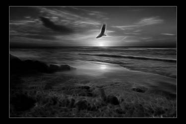Sundown in Black and White by Misty2007