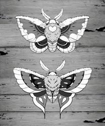 Moths Lineart