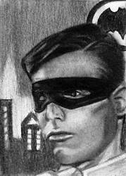 Robin 1966 by bmac78