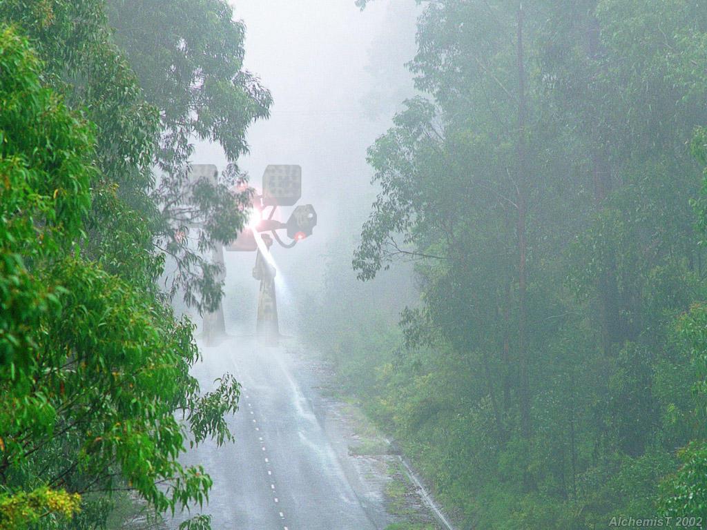 http://fc01.deviantart.net/images/i/2002/40/1/4/Rainy_mech_in_fog.jpg