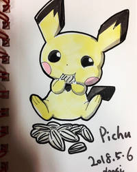 Pichu eating sunflower seeds :D by studio-leesi