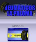 Logo and Website Neumaticos la Paloma