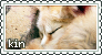 Foxkin Stamp 01 by oceanstamps