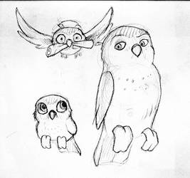 owls by laerry