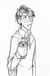 Ron and Pigwidgeon by laerry