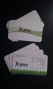 Kudos business cards in print