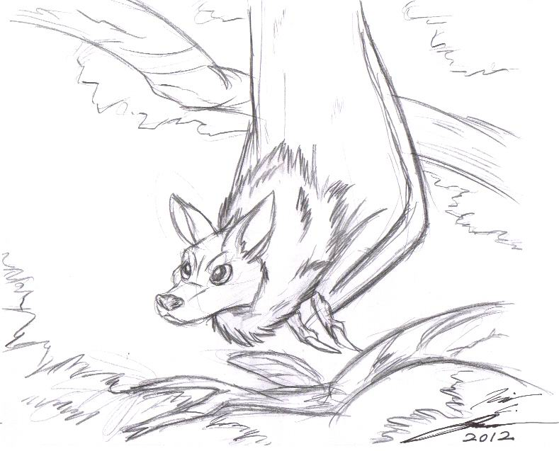 Bat sketch by slasher12 on deviantart for How to draw a small bat