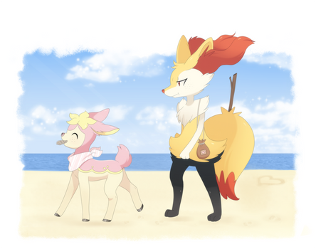 [ PCH ] Let's find some pretty seashells !