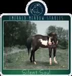 EMS Silent Soul