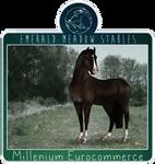 EMS Millenium Eurocommerce U.S.