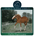 Hello Hurricane van VillaGana - At EMS