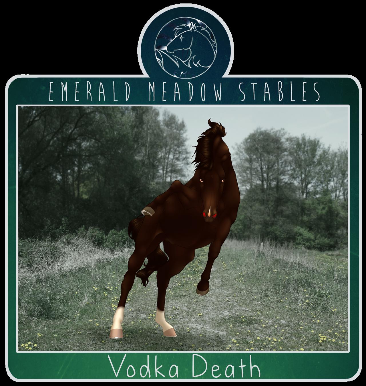 EMS Vodka Death