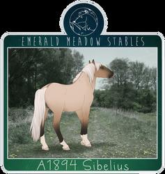 A1894 Sibelius