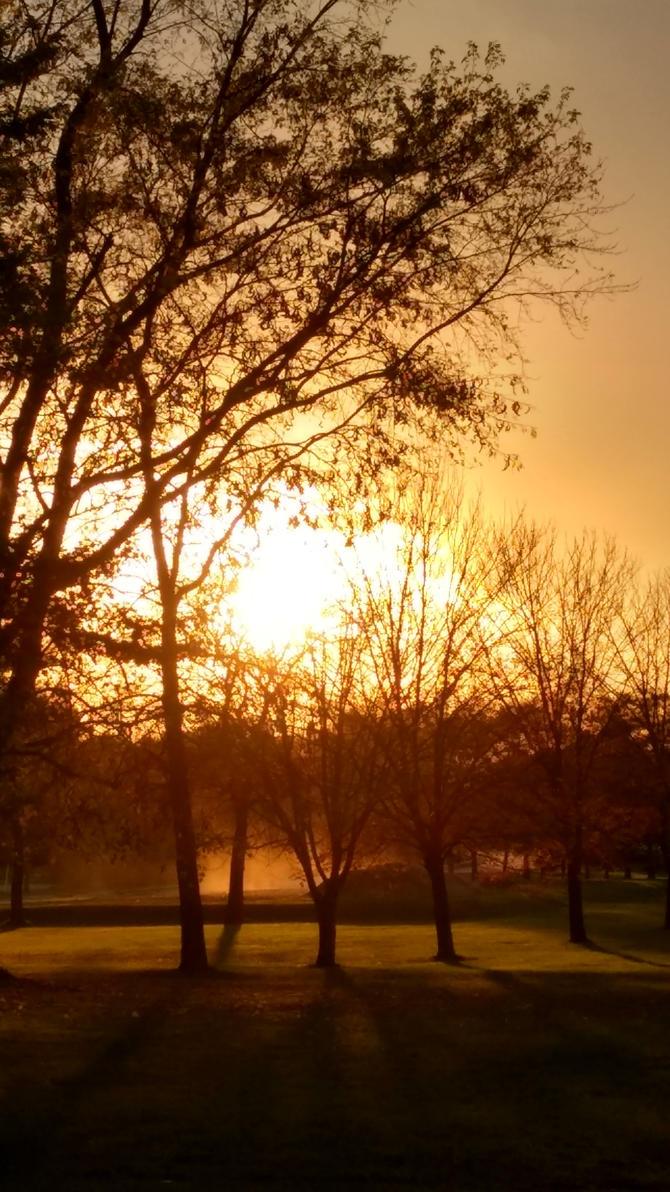 Autumn sunset by FairieShadows