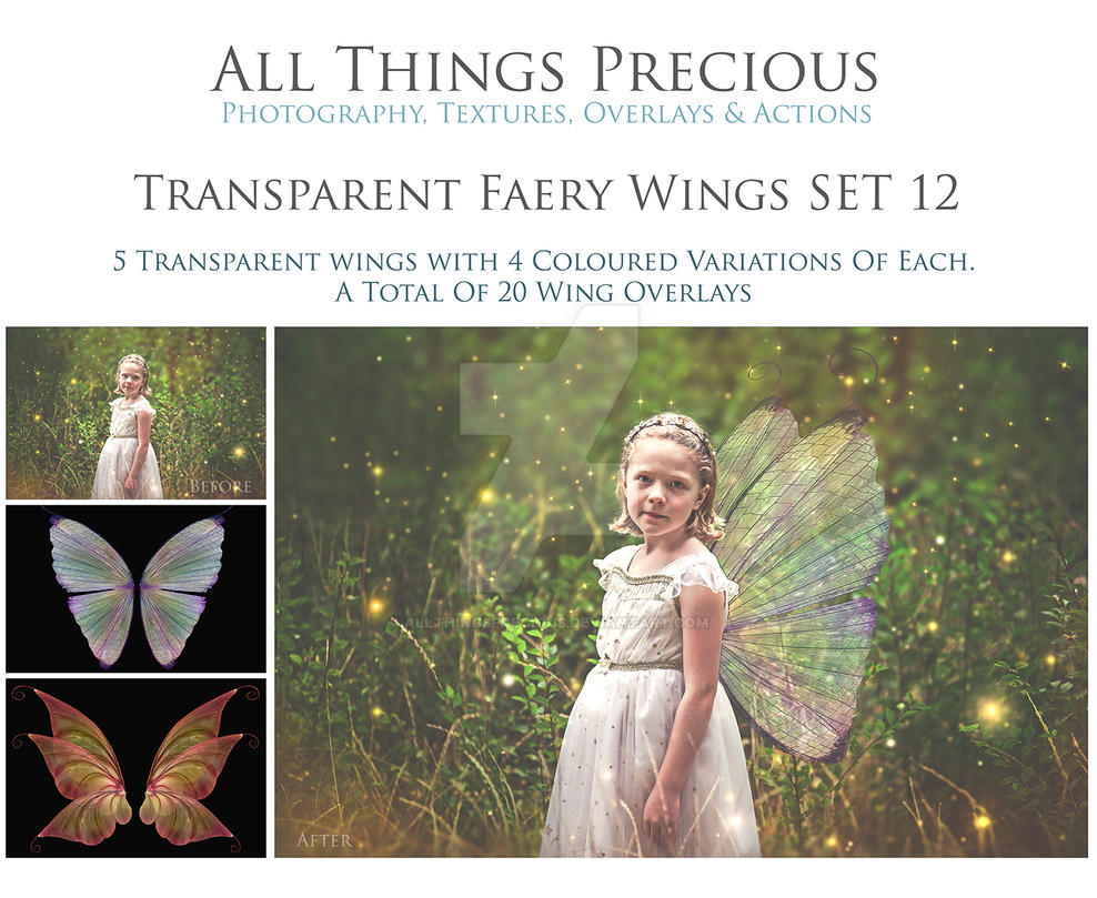 Transparent Fairy Wings SET 12 by AllThingsPrecious