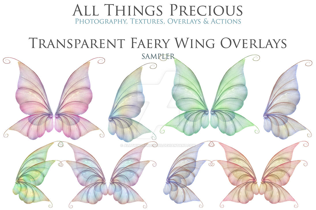 Transparent wing overlays set 12 by AllThingsPrecious