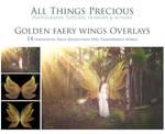 Golden Fairy Wings