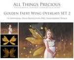 Golden Fairy Wings SET 2