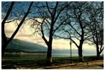 Ioannina Lake II