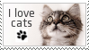 I love Cats - Stamp