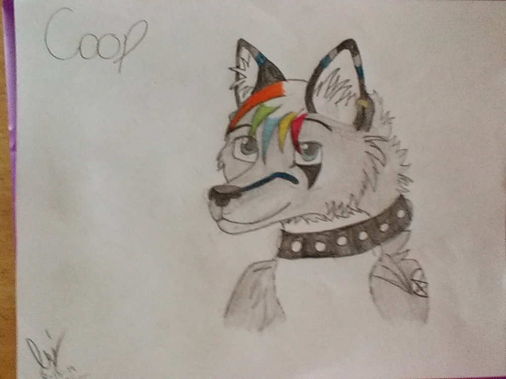 My Furry OC by shadowwolf266