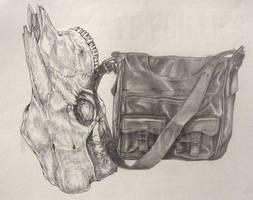 Skull and Bag