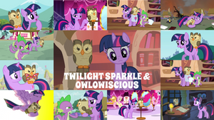 Request: Twilight And Owlow