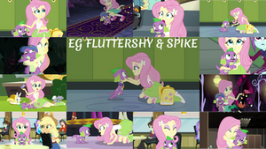 Request: EG Fluttershy And Spike