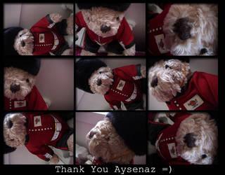 Aysens present by ozanne