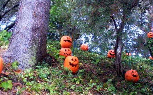 31Days10-Ten Little Pumpkins by TheHarlequinRomance