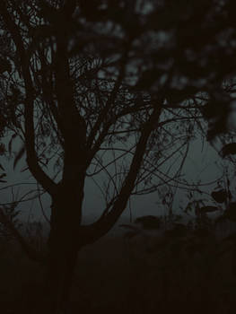 always alone #2 - the gloom