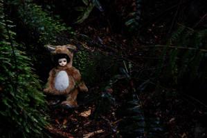 The Bear Rests by kawaiimon