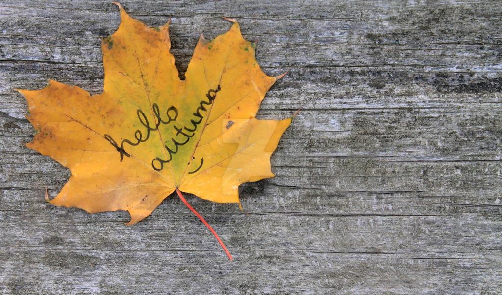 hello autumn wallpaper - photo #9