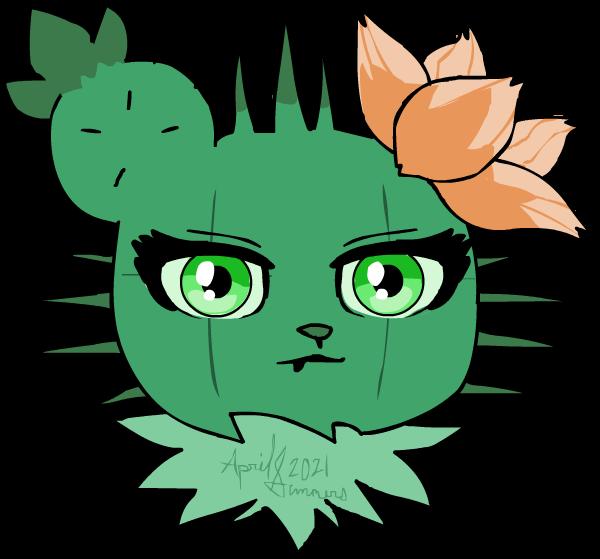 Cactus Stare