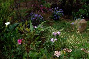 My Garden by Armathor-Stock