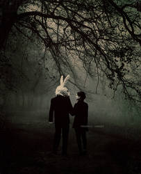 rabbit tale