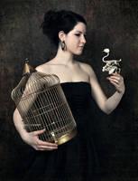 bird... by SuzyTheButcher