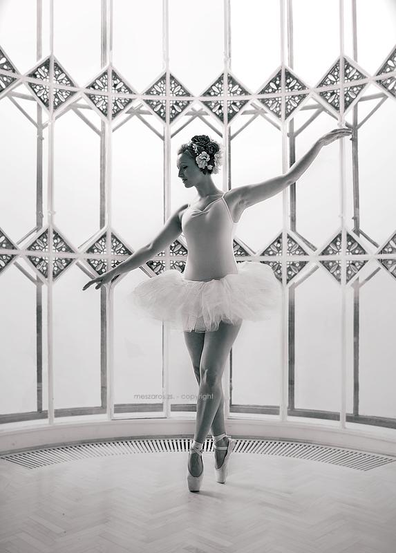 Balerina - Page 2 White_balerina_by_SuzyTheButcher