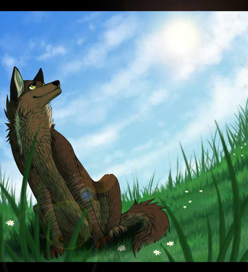 Com - Look at that beautiful sky by Reneah