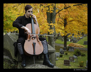 Cemetery Music 1