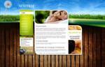 Relaxing Website