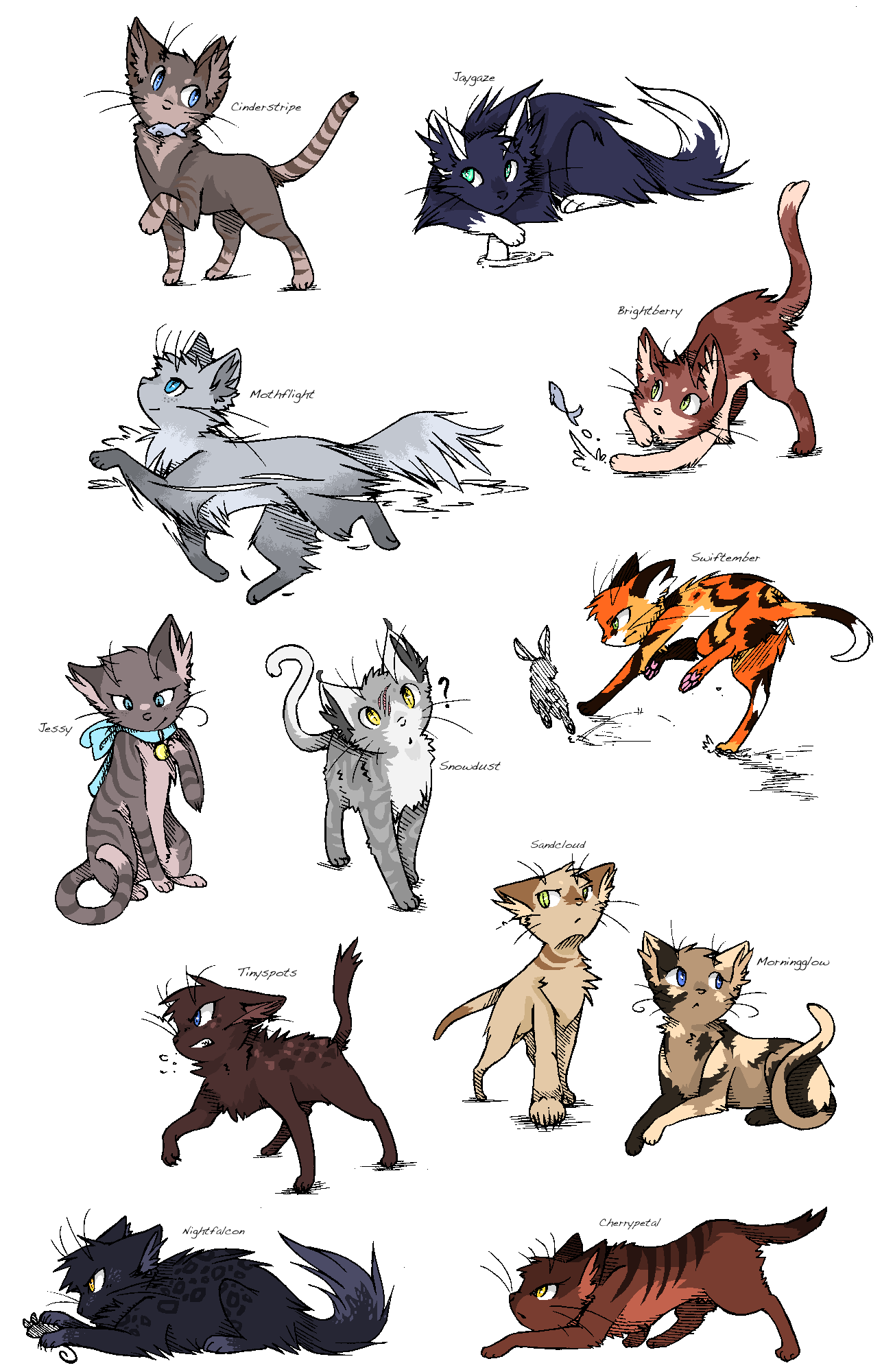 Warrior Cat All Characters